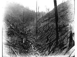 1910 gulley
