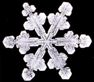 Snowflake11