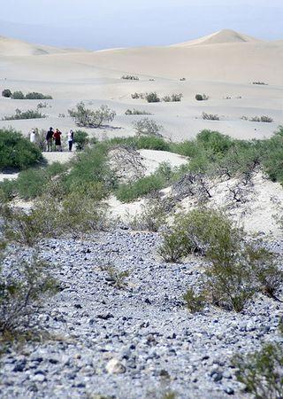 426px-Death_Valley_turistoj
