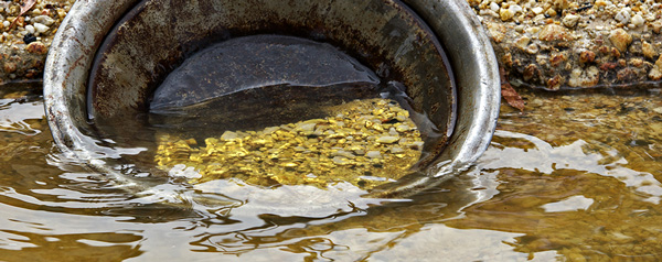 GoldPanOnBank